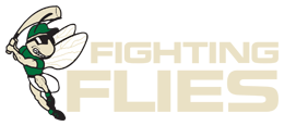 Fighting flies | Baseball Bratislava